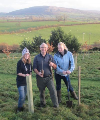 Milnthorpe Kennels and Cattery Tree planting